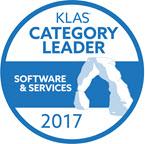 Category-Leader-2017