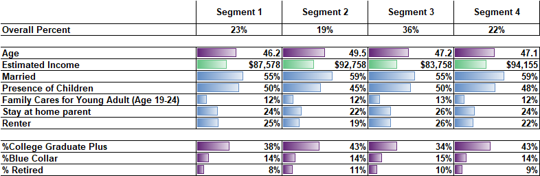 matching demographics with segments